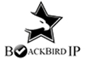 Developed Designed And Promote : BlackbirdIP.com